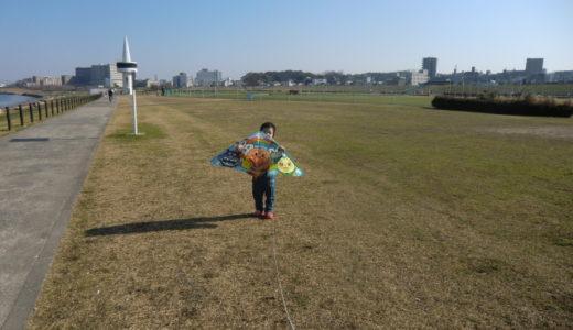 枚方市で凧揚げするのに最適な場所、淀川河川公園でたこあげしてきた!