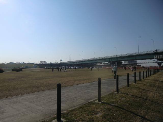 枚方市淀川河川公園