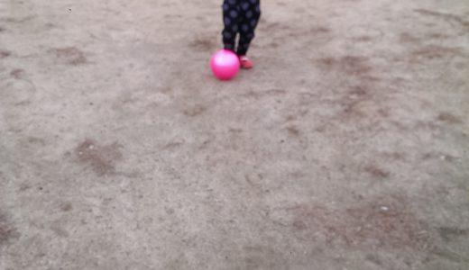 枚方市の淀川河川公園に3歳の子供と行って来た!