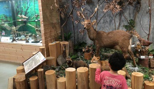 あくあぴあ芥川に行ってきた!高槻市の自然博物館