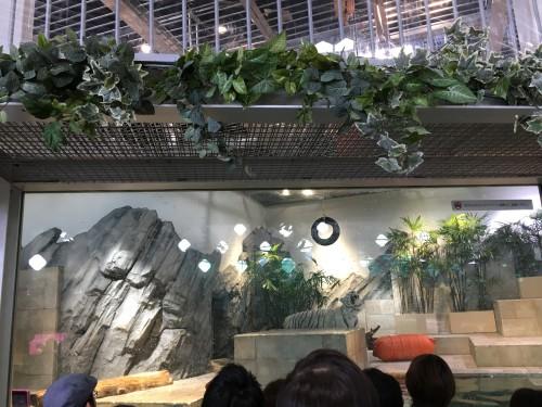 エキスポシティの水族館