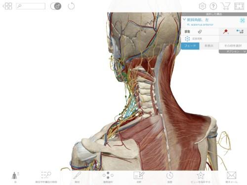 解剖アプリ詳細