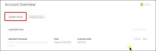 Akismet API キー