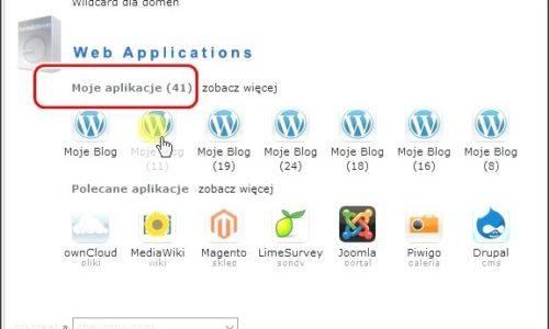 SEOLite(ポーランドサーバー)Wordpressの削除方法