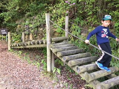 大阪で子供と「アスレチック・果物狩り・釣り堀」が楽しめるところ