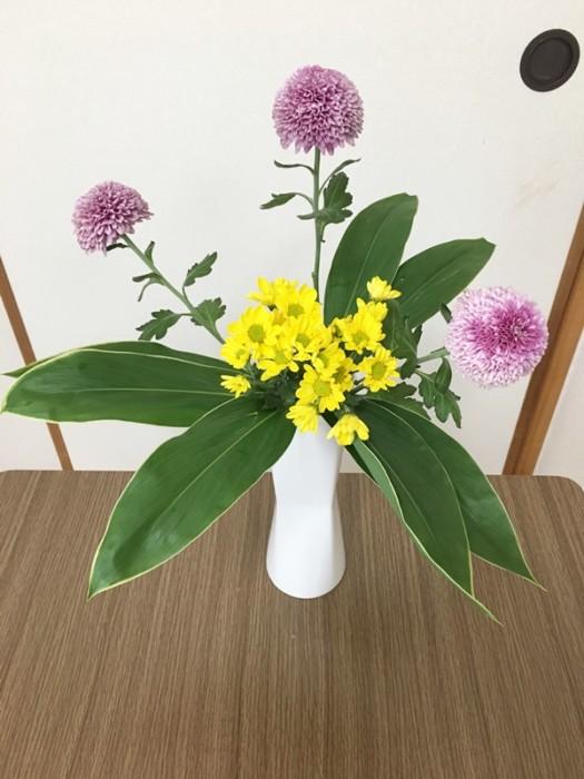 ピンポン菊 生け花