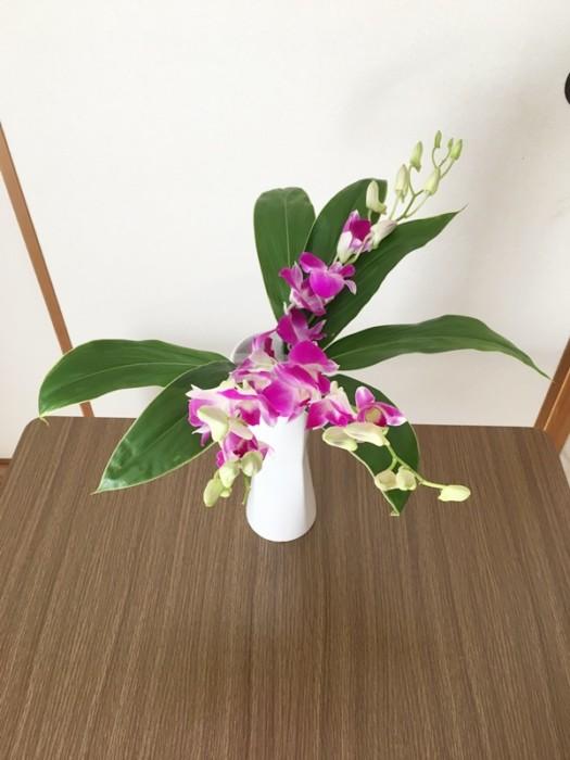 デンファレ生け花
