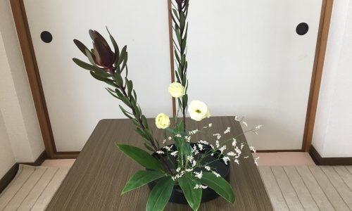 生け花【通信教育】18回目