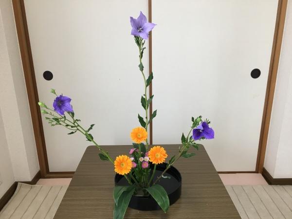 生け花 ガーベラ
