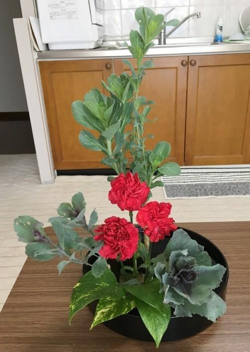 葉牡丹ikebana