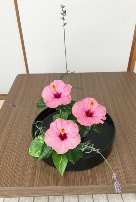 ハイビスカスの生け花