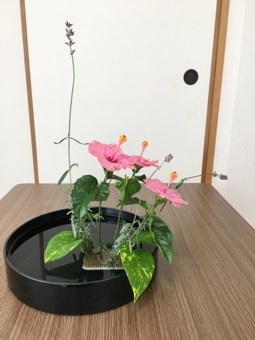 ハイビスカス生け花