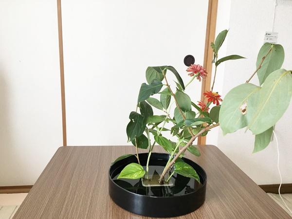 生け花 柿