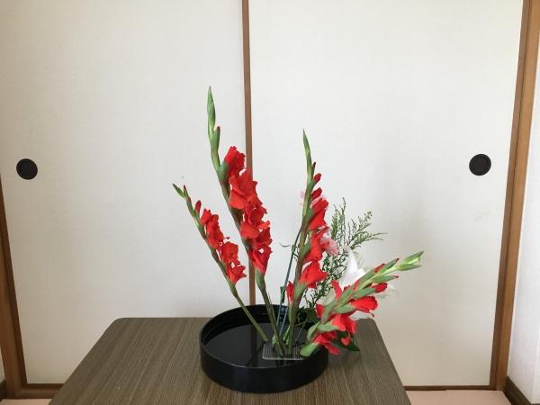グラジオラス生け花 側面
