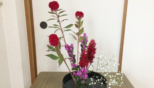 生け花【通信教育】25回目