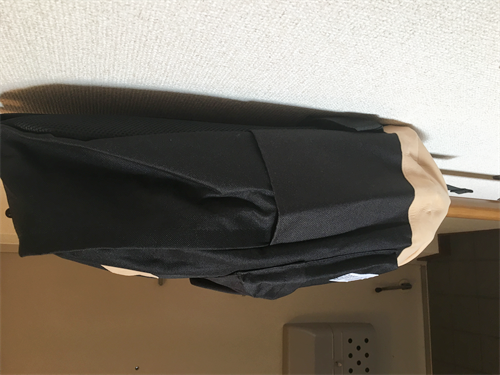 SAKUTANE(JP) リュック シワ伸ばし後